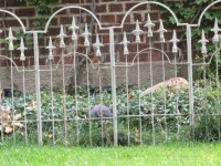 iron-anvil-fences-by-others-roosevelt-ave-about-1400-e-2-2
