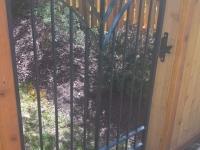 61-0880-Iron-Anvil-Gates-Man-Arch-STAES-15186-TULIP-SUNBURST-GATE-99-