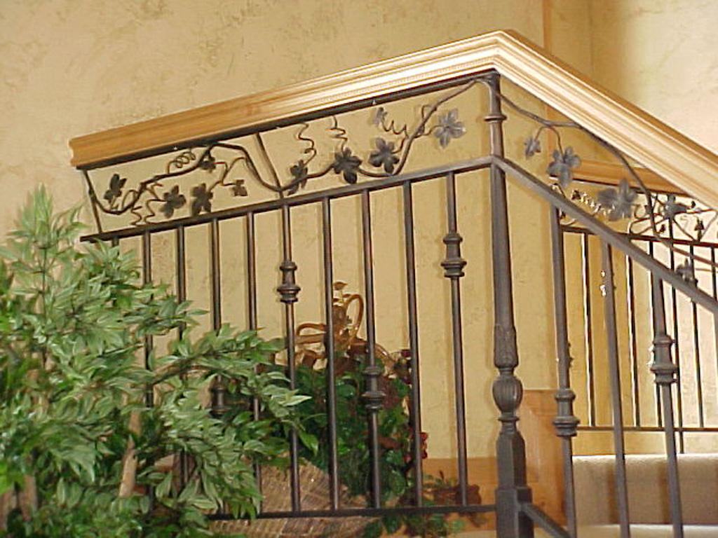 iron-anvil-railing-double-top-valance-vine-norton-park-city